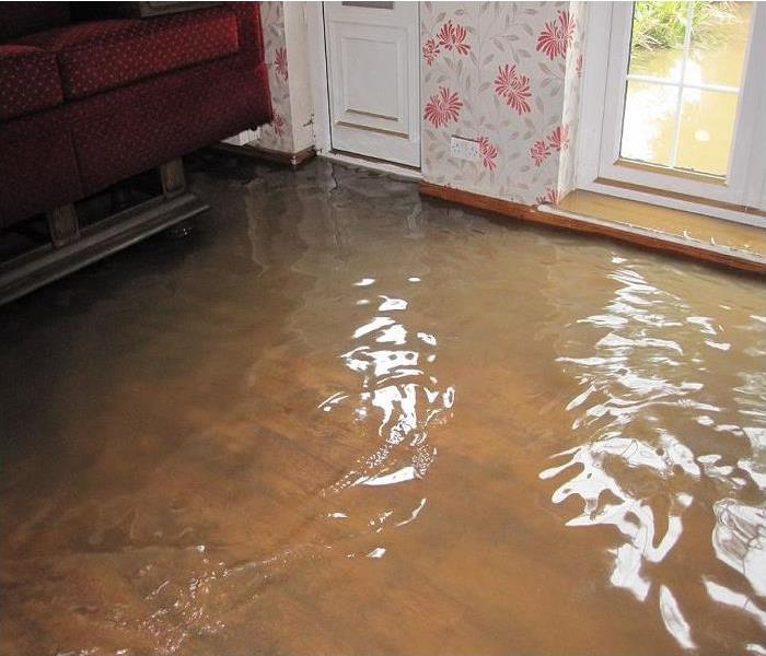 Water Damage Up to your ankles in water?
