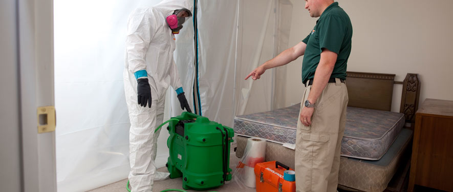 New Braunfels, TX mold removal process